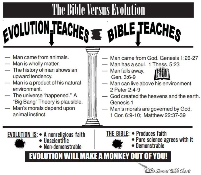barnes bible charts evolution versus christianity
