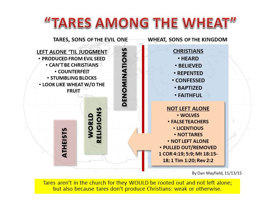Tares among the wheat world denominations