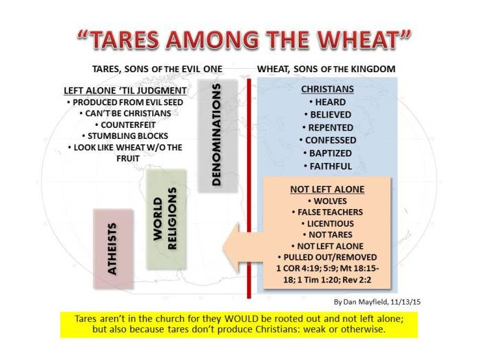 Tares among the wheat world denominations